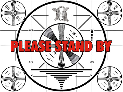 Please Stand By Moona