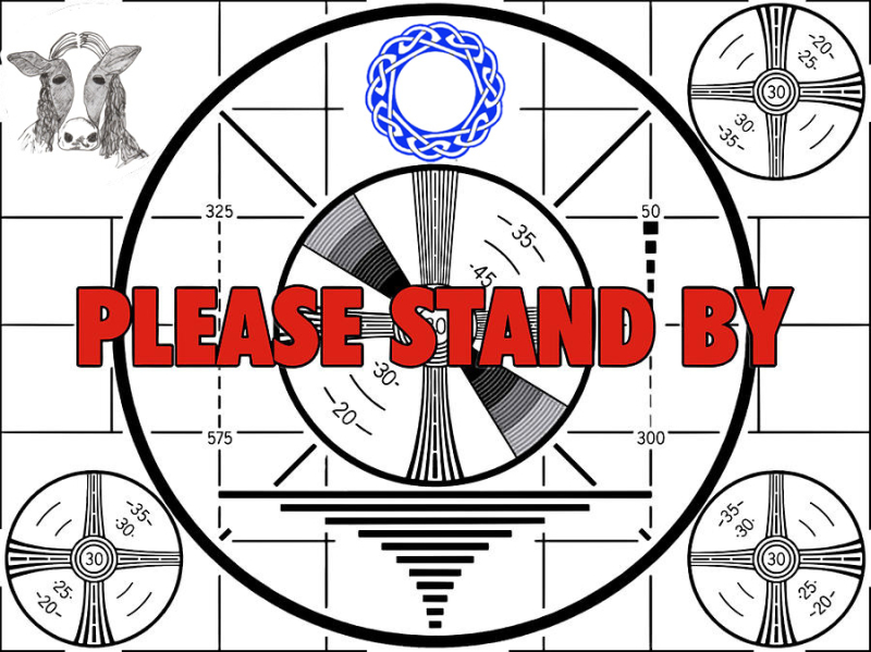 Please Stand By 02